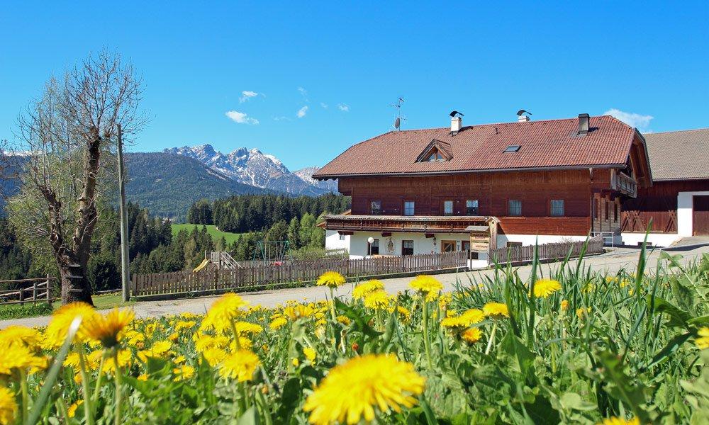 La vostra casa vacanza in Val Pusteria – appartamenti confortevoli e moderni